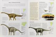 Cretaceous titanosaurs