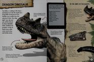 Dragon dinosaur
