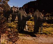 ApatosaurusWhenDinosaursRoamedAmerica