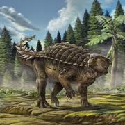 Life reconstruction of Kunbarrasaurus ieversi.png