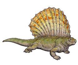 Edaphosaurus colohistion.JPG