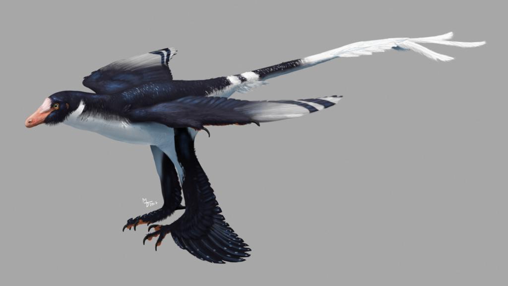 Zhongjianosaurus