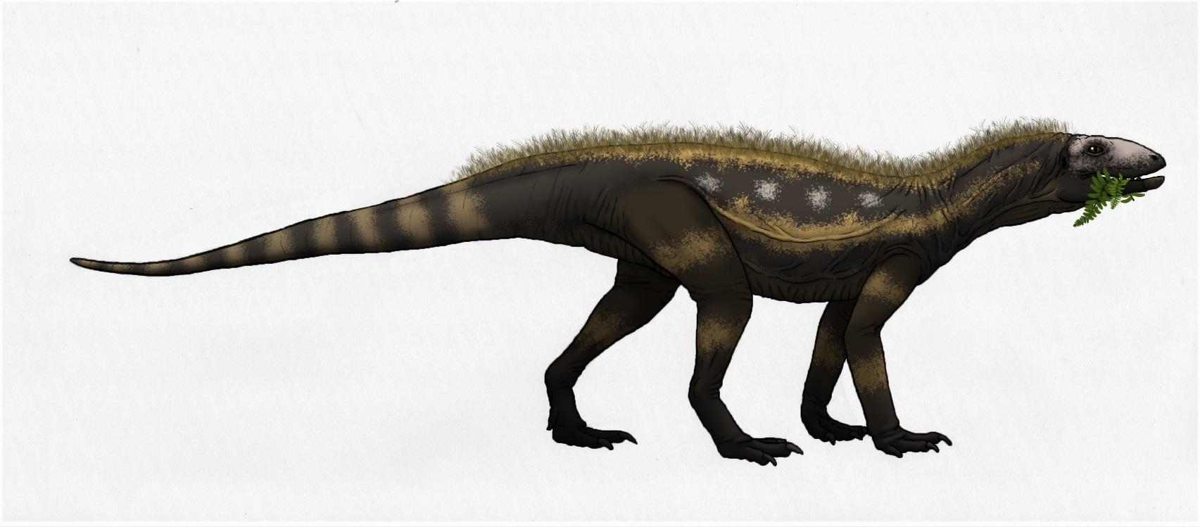 Kwanasaurus