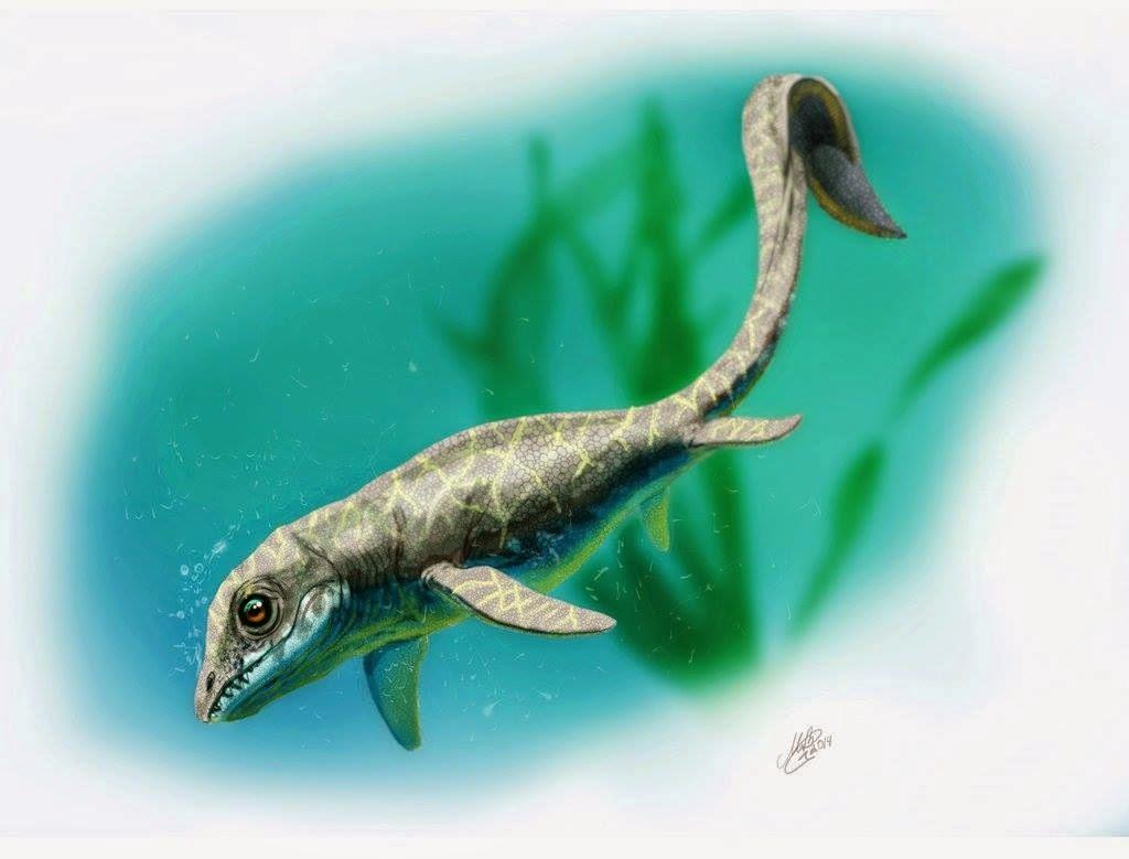 Cartorhynchus