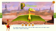 Dinosaur Train Peteinosaurus Diet