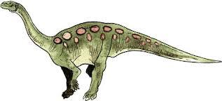 Plateosauridae