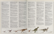 A to Z of dinosaurs 3