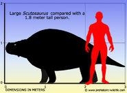 Scutosaurus-size