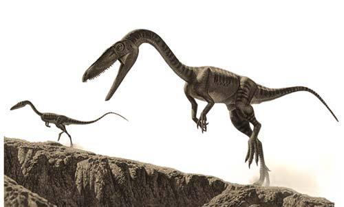 Coelophysidae