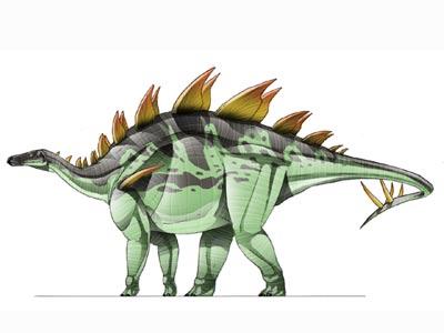 Loricatosaurus