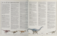 A to Z of dinosaurs 1