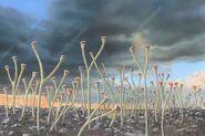 C0372506-Early vascular plants Cooksonia , illustration