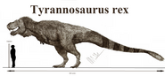 Tyrannosaurus rex by teratophoneus-d9bnkd0