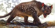 Megafauna-australia