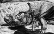 Sketch drawing of Triceratops & fallen T-rex