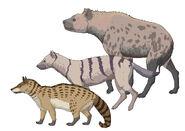 Prehistoric hyenas of anatolia by nemo ramjet d1u54b1