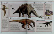 Dsungaripterus, Wuerhosaurus, Probactrosaurus, Pachyrhacis, Psittacosaurus