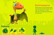 Peteinosaurus en US