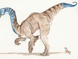 Xixiposaurus