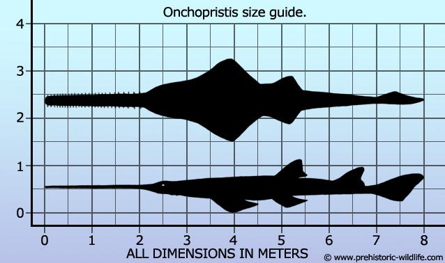 Onchopristis