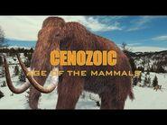 Cenozoic- Age of the Mammals