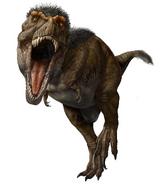 Illustration of Tyrannosaurus rex with feathers