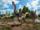 Corythoraptor