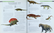 Pelycosaurs and Therapsids 2