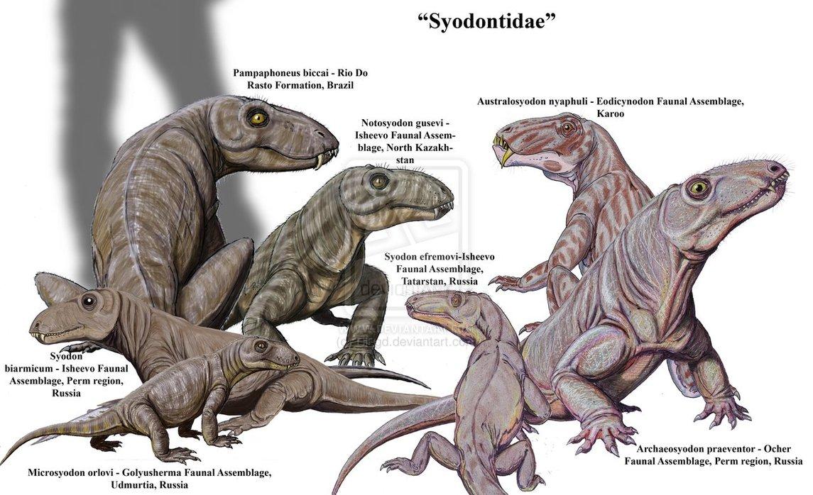 Syodontinae