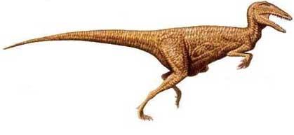 Likhoelesaurus