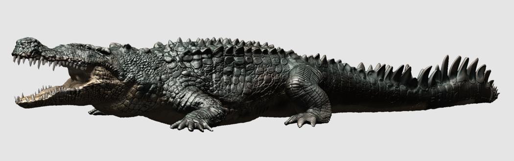 Deinosuchus/Gallery