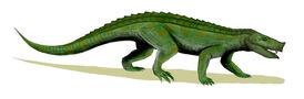 Notosuchus BW.jpg