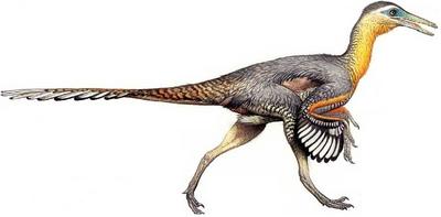 Buitreraptor-dinosaurs-28667916-796-392.png