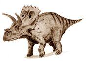 Arrhinoceratops-Arthur-Weasley.jpg