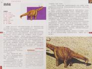 Chinese Apatosaurus