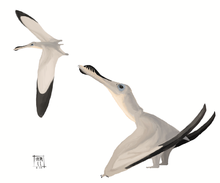 2 pterodactyls.png