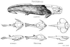 Placoderms by paleoaeolos.jpg