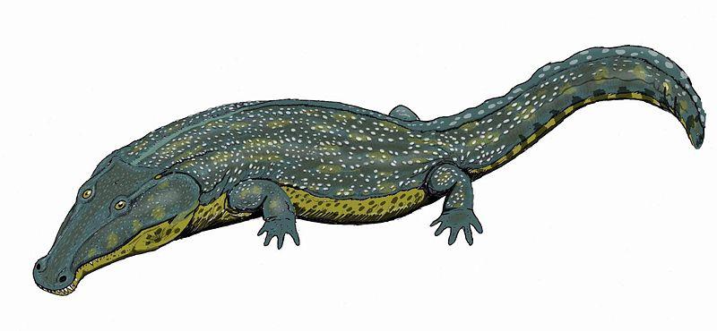 Melosaurus