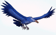 Reconstruction of Argentavis magnificens