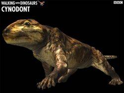 Cynodont z1.jpg
