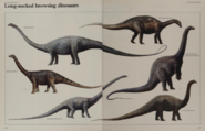 Long necked browsing dinosaurs collection 2