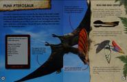 Punk Pterosaur