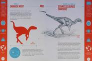 Drinker and Othnielosaurus