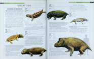 Therapsids 1