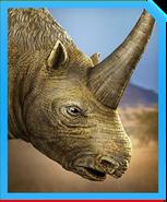 Elasmotherium-min