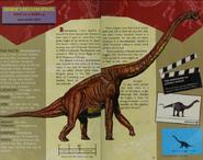 Brachiosaurus and Apatosaurus