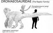 The big and the small dromaeosauridae by kingrexy ddmlg7y-fullview