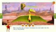 Dinosaur Train Peteinosaurus Facts