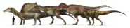 Illustration of four theropods