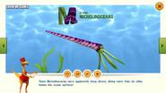 Dinosaur Train Michelinoceras Intro